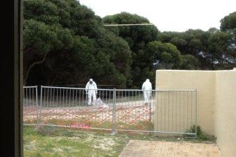 asbestosisland